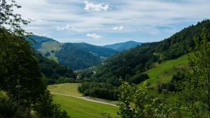 Bewaldete Huegel Im Schwarzwald